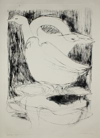 Geese - drypoint